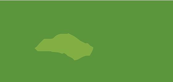 Viveros Floristería Castro Urdiales - VIVEROS LA BARRERA
